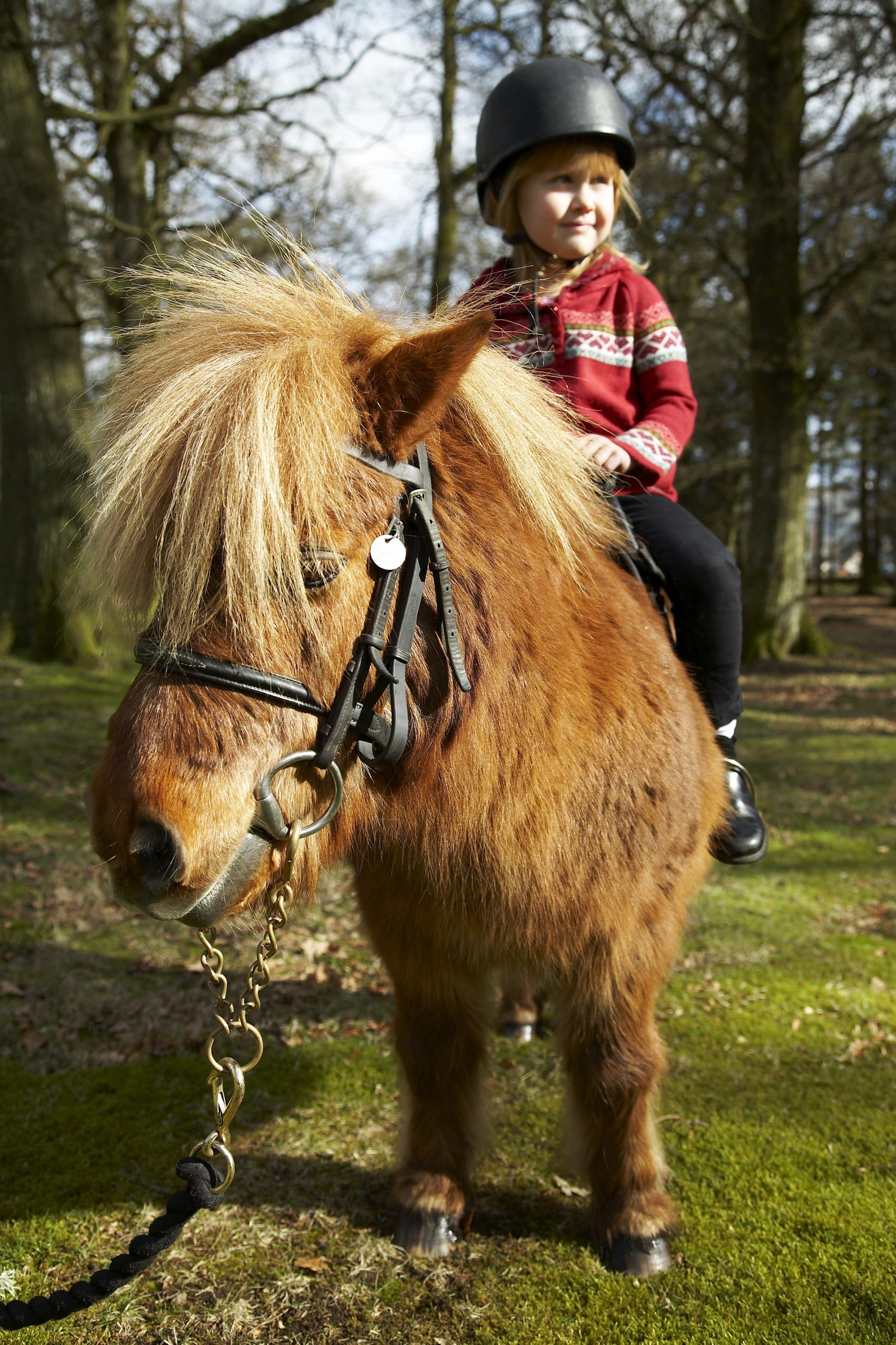 Kids can get their first taste of pony trekking at Gleneagles