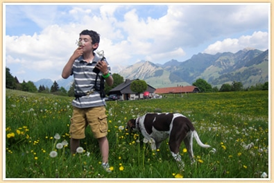 boy smelling narcissus flower swiss mountains