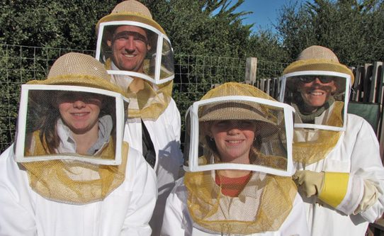 Carmel Valley Ranch Bee Experience